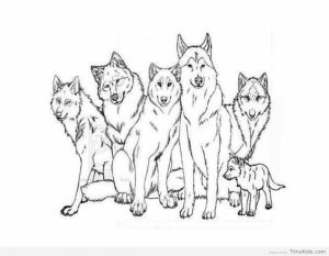 Wolf Coloring Pages Free Printable   31672